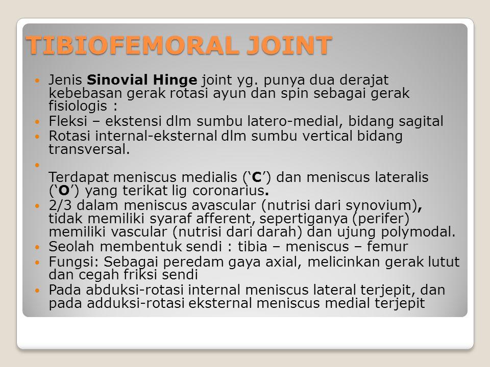 TIBIOFEMORAL JOINT Jenis Sinovial Hinge joint yg. punya dua derajat kebebasan gerak rotasi ayun dan spin sebagai gerak fisiologis :