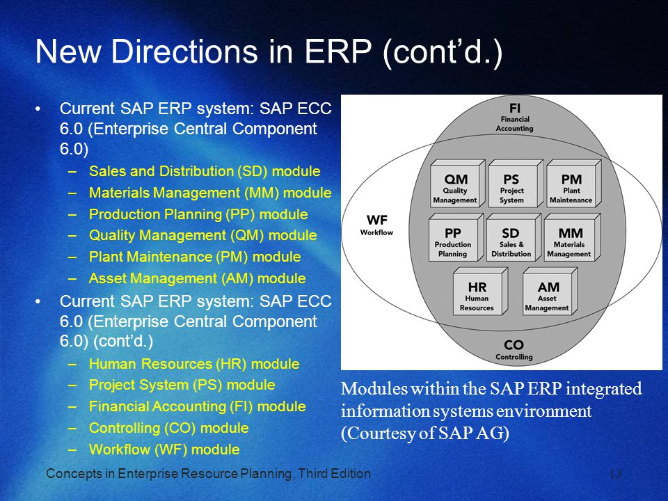 New Directions in ERP (cont'd.)