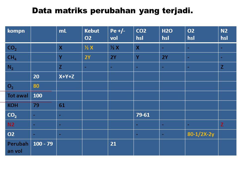 Data matriks perubahan yang terjadi.