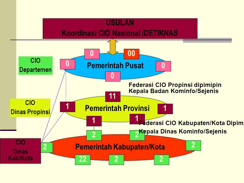 Koordinasi CIO Nasional /DETIKNAS Pemerintah Kabupaten/Kota