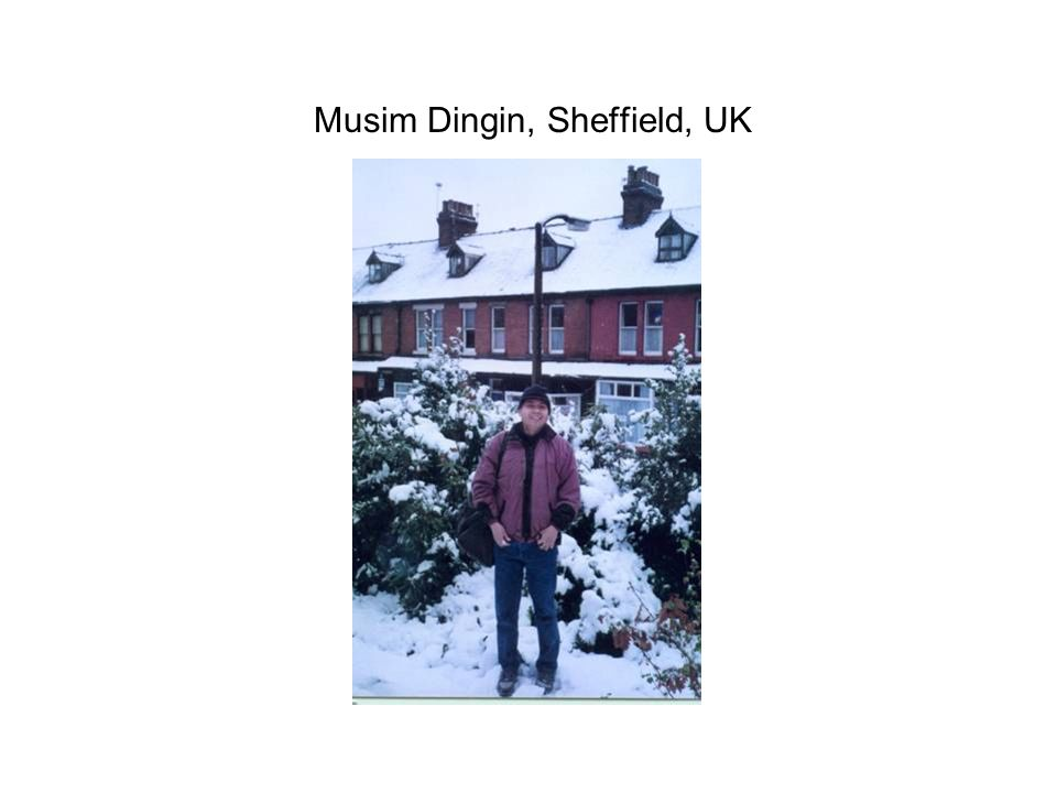 Musim Dingin, Sheffield, UK