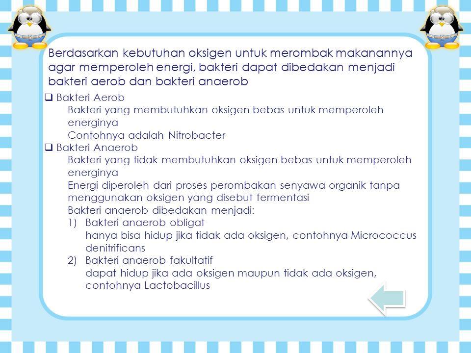 Berdasarkan kebutuhan oksigen untuk merombak makanannya agar memperoleh energi, bakteri dapat dibedakan menjadi bakteri aerob dan bakteri anaerob