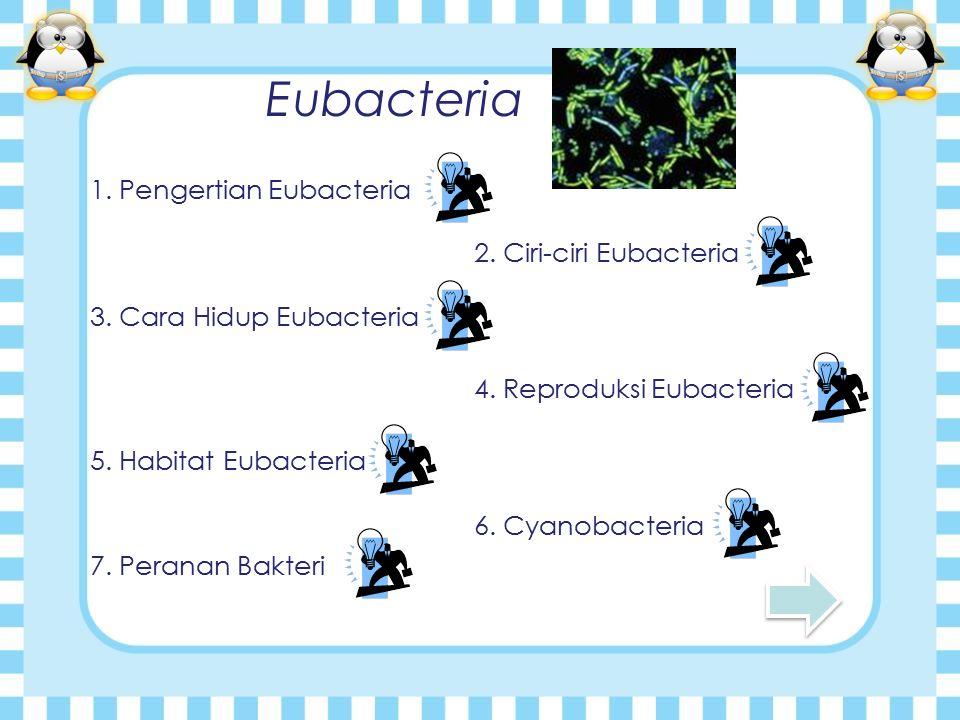 Eubacteria 1. Pengertian Eubacteria 2. Ciri-ciri Eubacteria