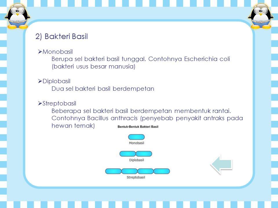 2) Bakteri Basil Monobasil