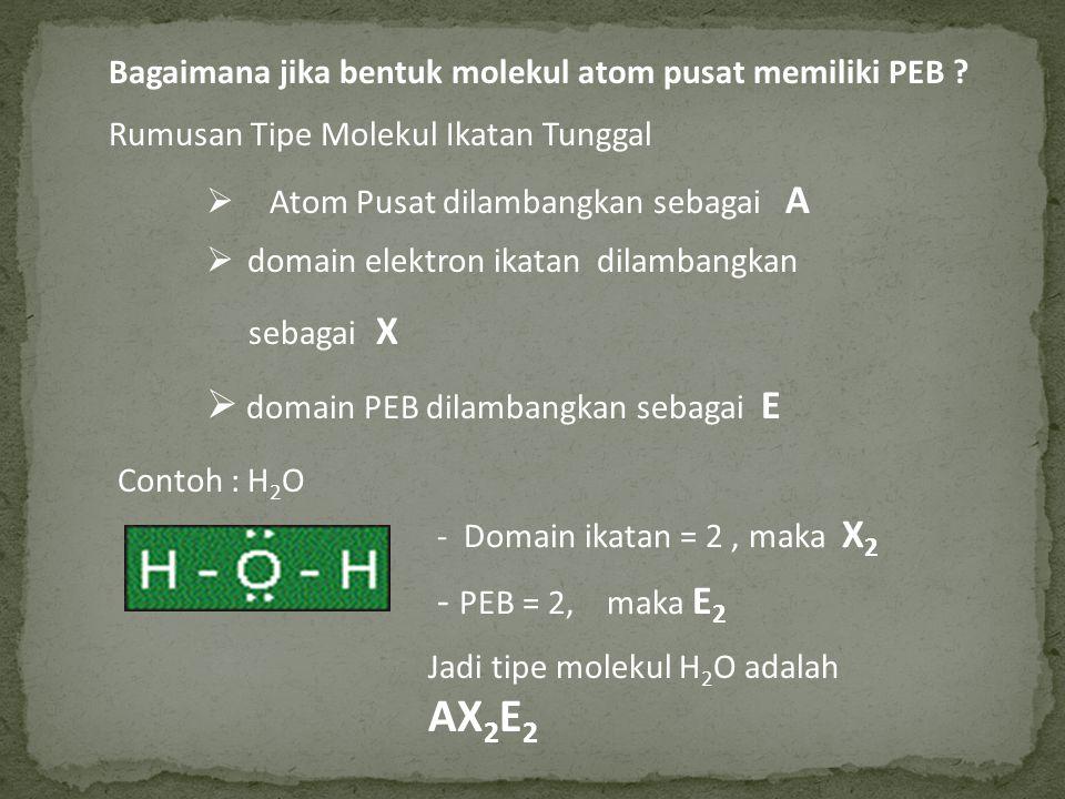 domain PEB dilambangkan sebagai E