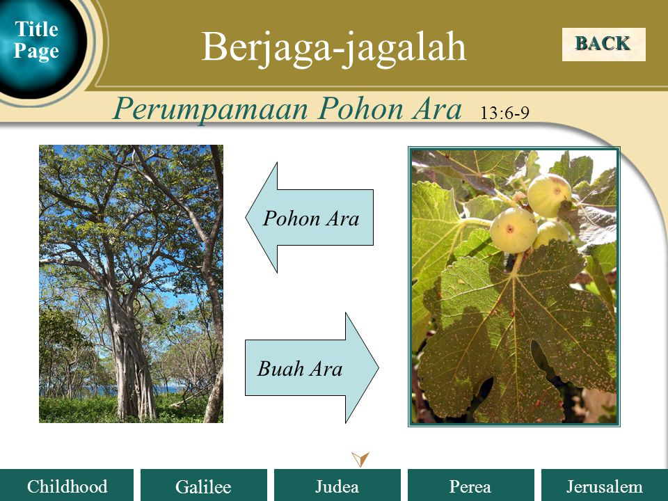 Berjaga-jagalah Perumpamaan Pohon Ara 13:6-9  Title Page Pohon Ara