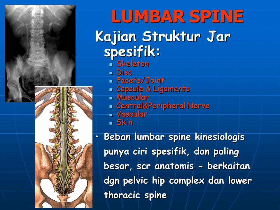 LUMBAR SPINE Kajian Struktur Jar spesifik: