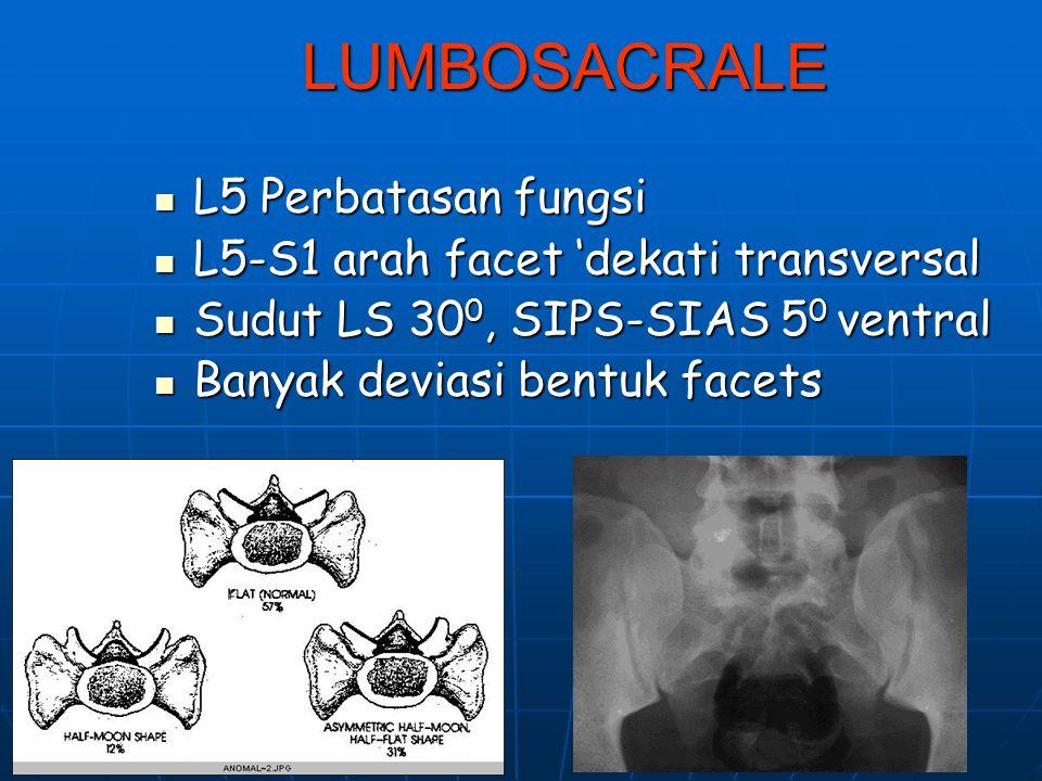 LUMBOSACRALE L5 Perbatasan fungsi L5-S1 arah facet 'dekati transversal