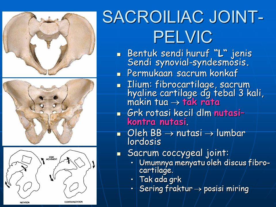 SACROILIAC JOINT-PELVIC