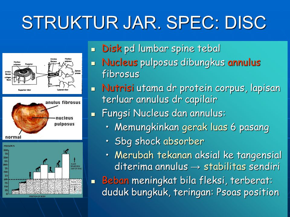STRUKTUR JAR. SPEC: DISC