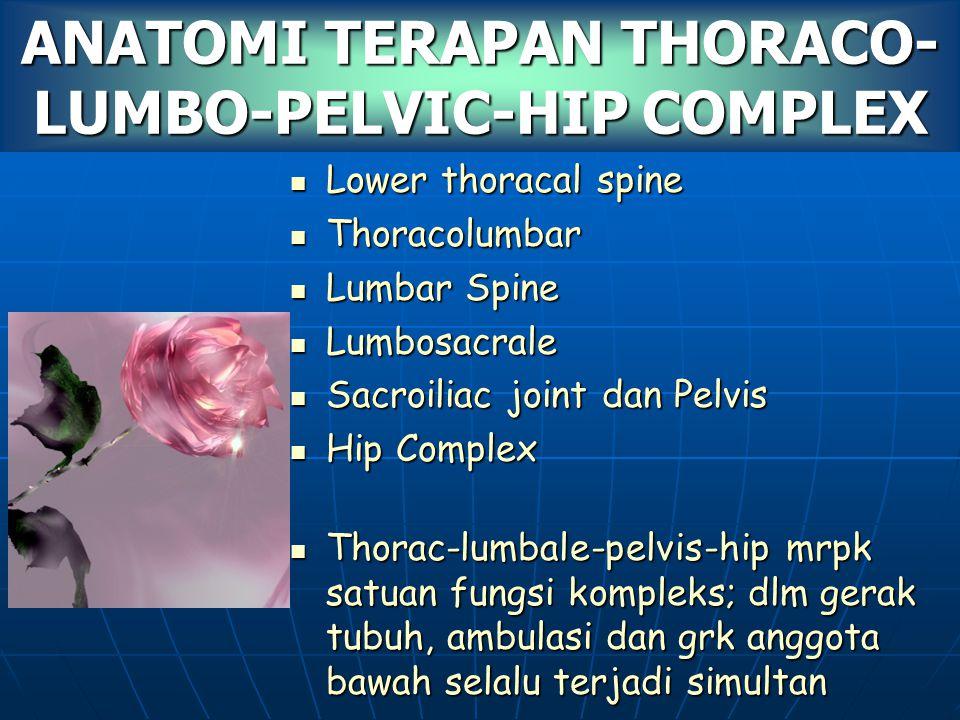 ANATOMI TERAPAN THORACO-LUMBO-PELVIC-HIP COMPLEX