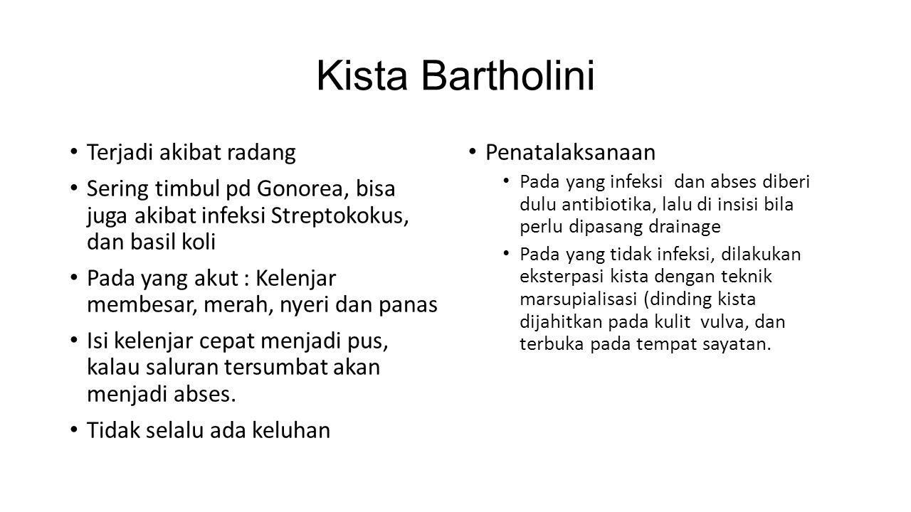 Kista Bartholini Terjadi akibat radang