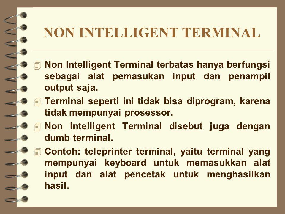 NON INTELLIGENT TERMINAL