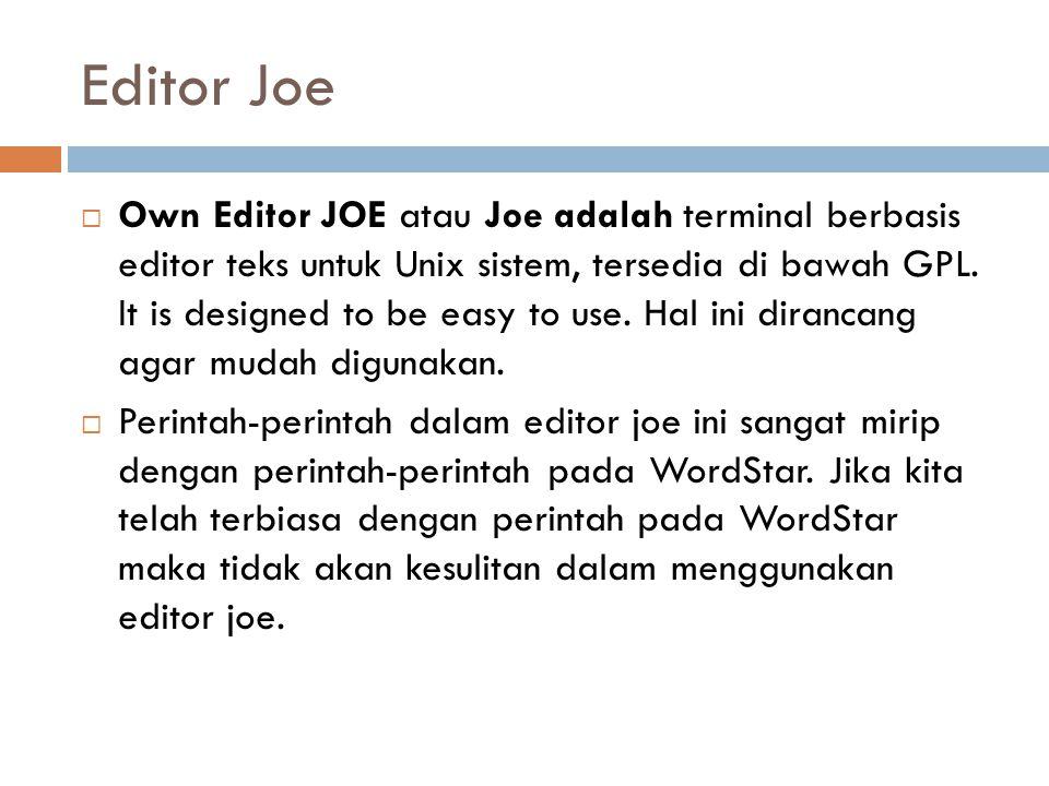 Editor Joe
