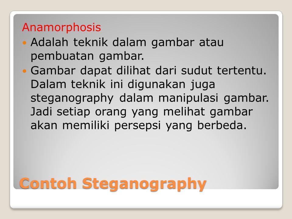 Contoh Steganography Anamorphosis