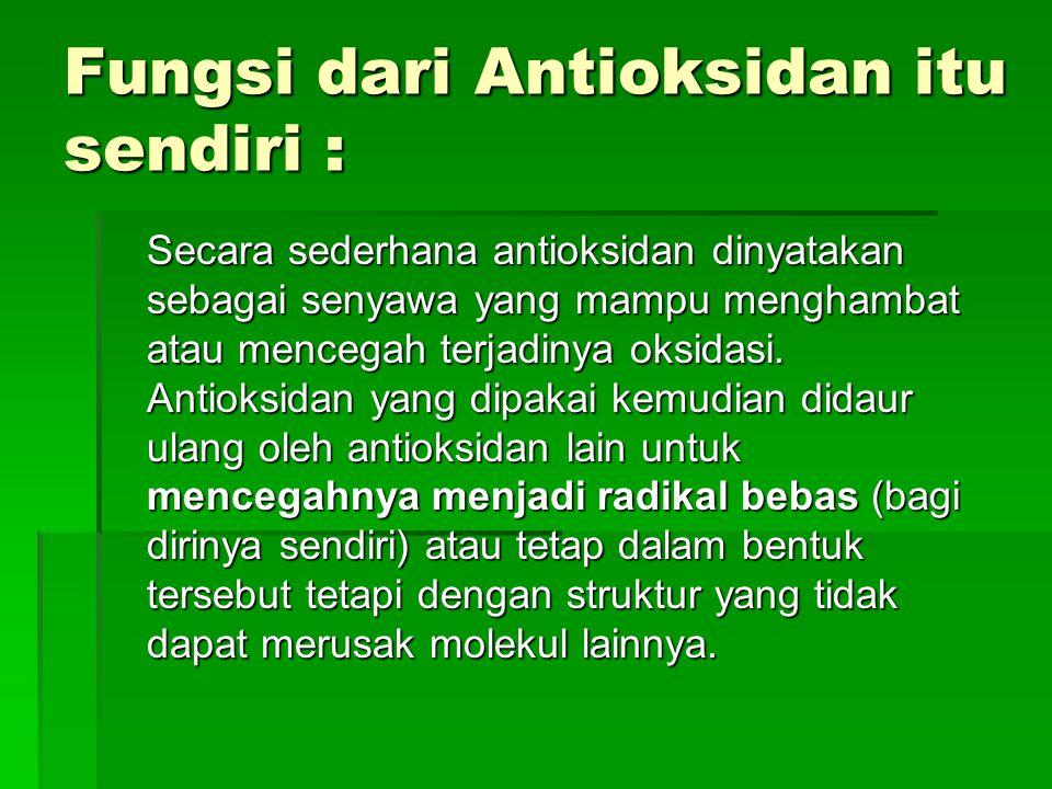 Fungsi dari Antioksidan itu sendiri :