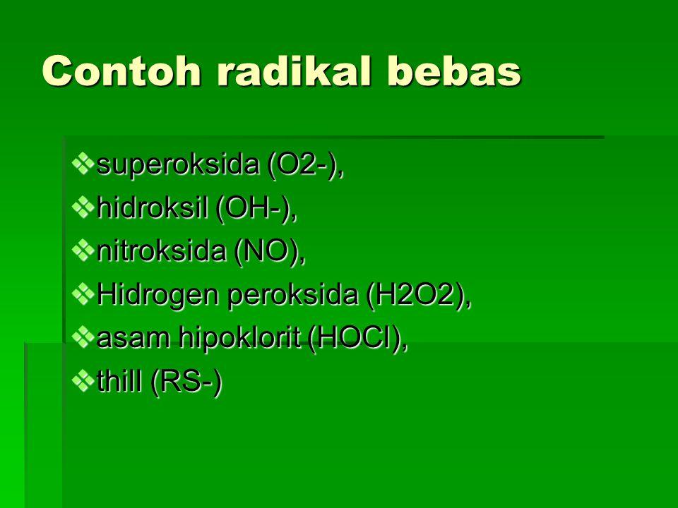Contoh radikal bebas superoksida (O2-), hidroksil (OH-),