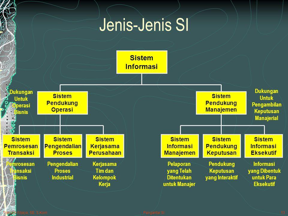 Jenis-Jenis SI Sistem Informasi Pendukung Operasi Manajemen Pemrosesan
