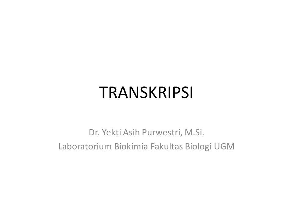 TRANSKRIPSI Dr. Yekti Asih Purwestri, M.Si.
