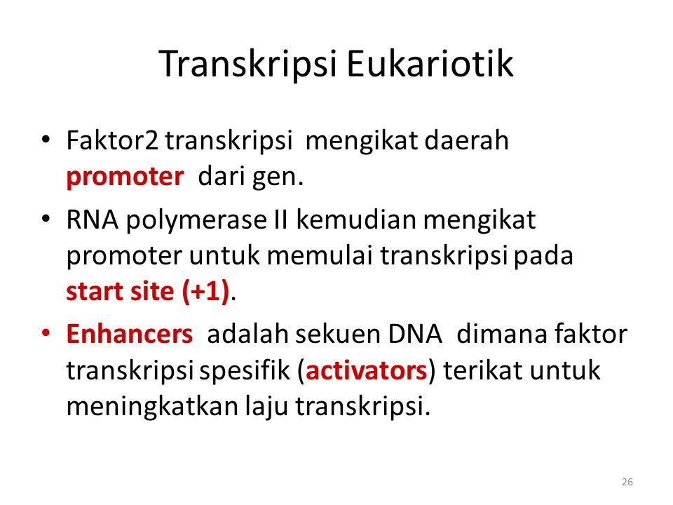 Transkripsi Eukariotik
