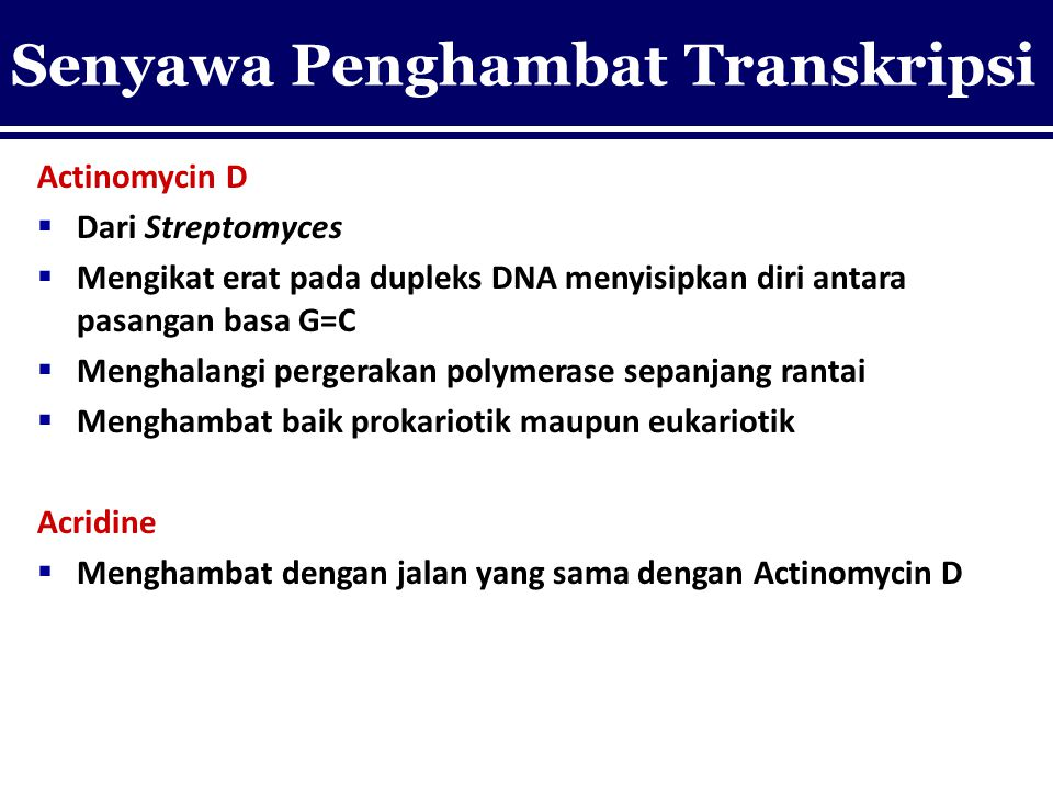 Senyawa Penghambat Transkripsi