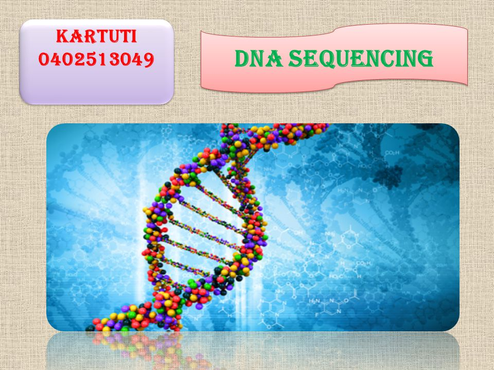 Kartuti 0402513049 DNA SEQUENCING