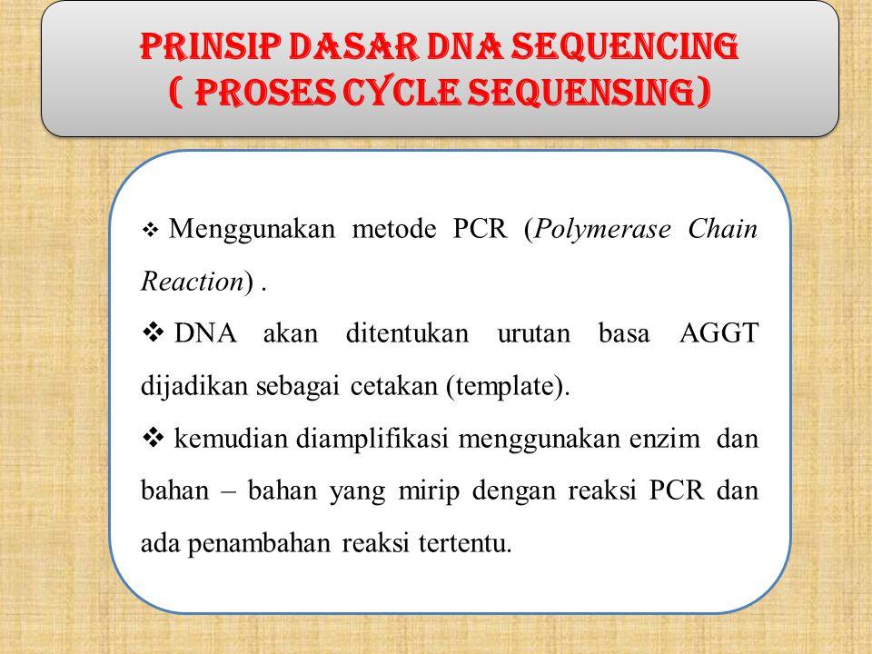 PRINSIP DASAR DNA SEQUENCING ( proses cycle sequensing)