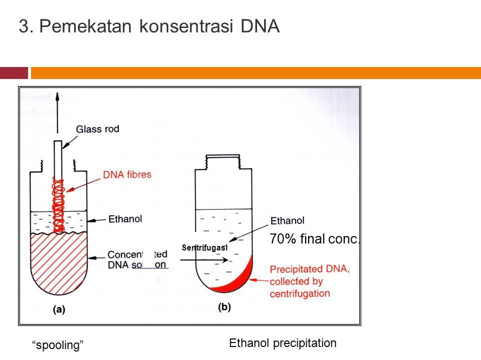3. Pemekatan konsentrasi DNA