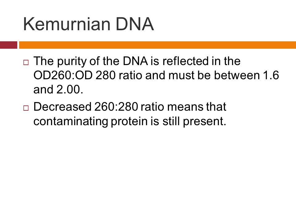 Kemurnian DNA The purity of the DNA is reflected in the OD260:OD 280 ratio and must be between 1.6 and 2.00.