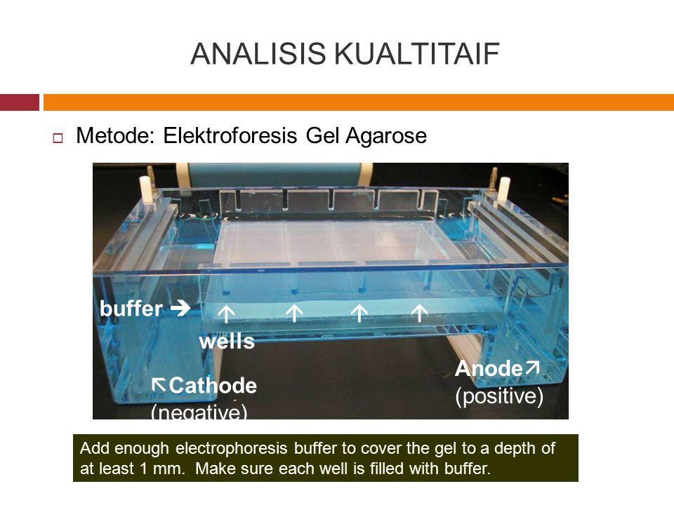 ANALISIS KUALTITAIF Metode: Elektroforesis Gel Agarose buffer  