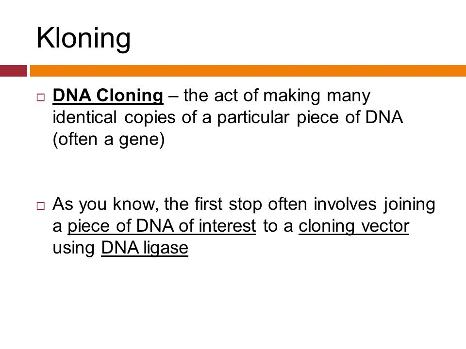 Kloning DNA Cloning – the act of making many identical copies of a particular piece of DNA (often a gene)