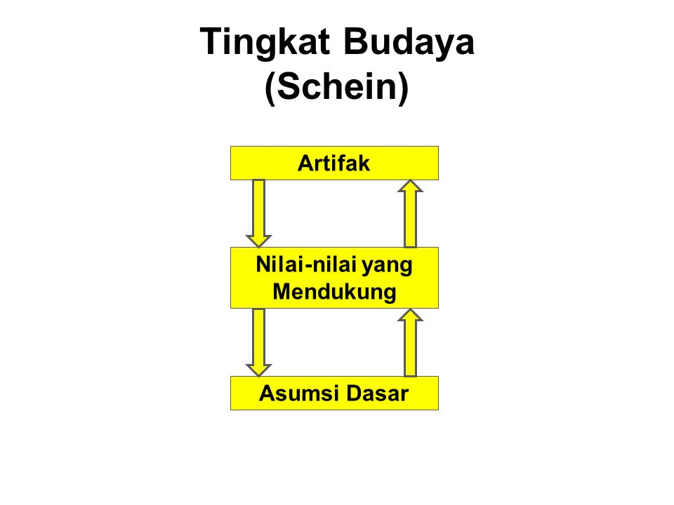 Tingkat Budaya (Schein)