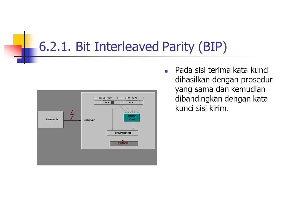 6.2.1. Bit Interleaved Parity (BIP)