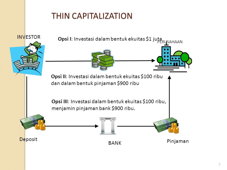 THIN CAPITALIZATION INVESTOR