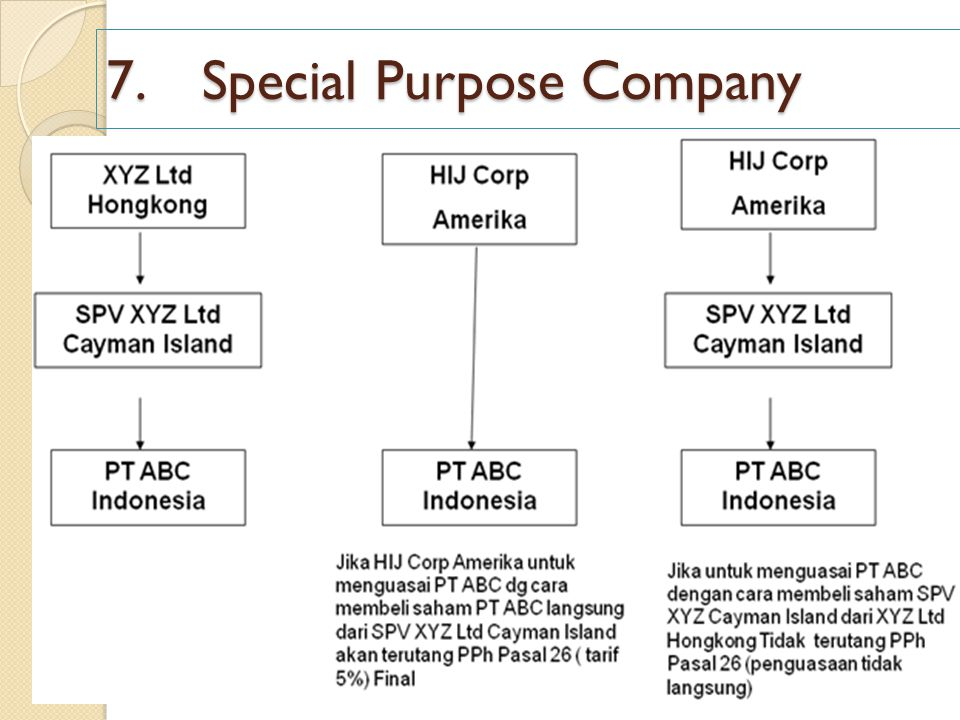 7. Special Purpose Company