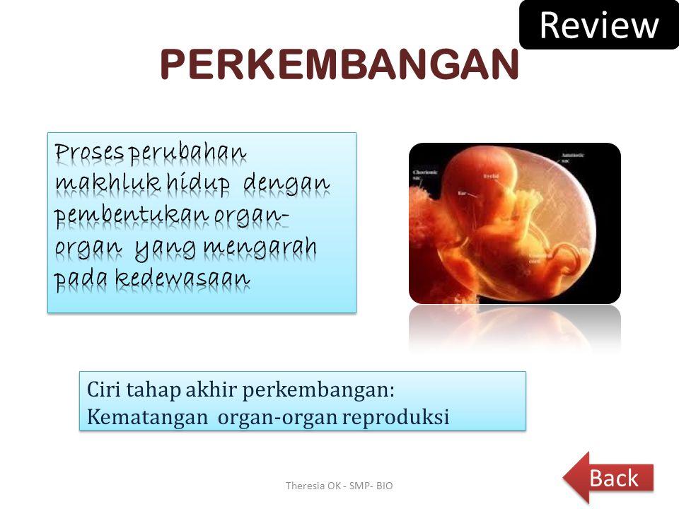 Review PERKEMBANGAN. Proses perubahan makhluk hidup dengan pembentukan organ-organ yang mengarah pada kedewasaan.