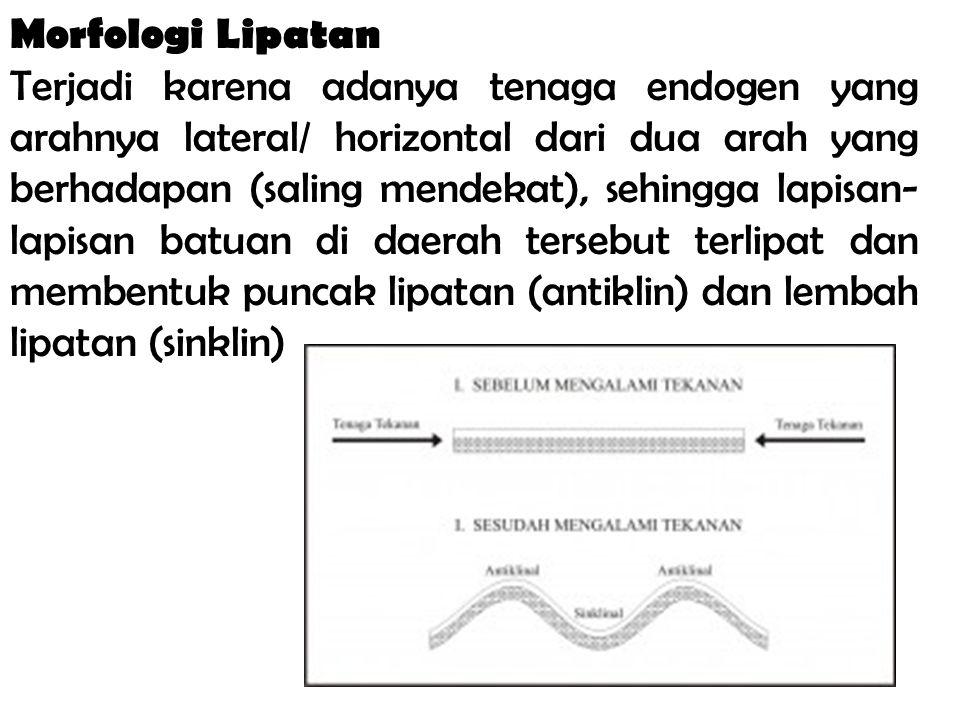 Morfologi Lipatan