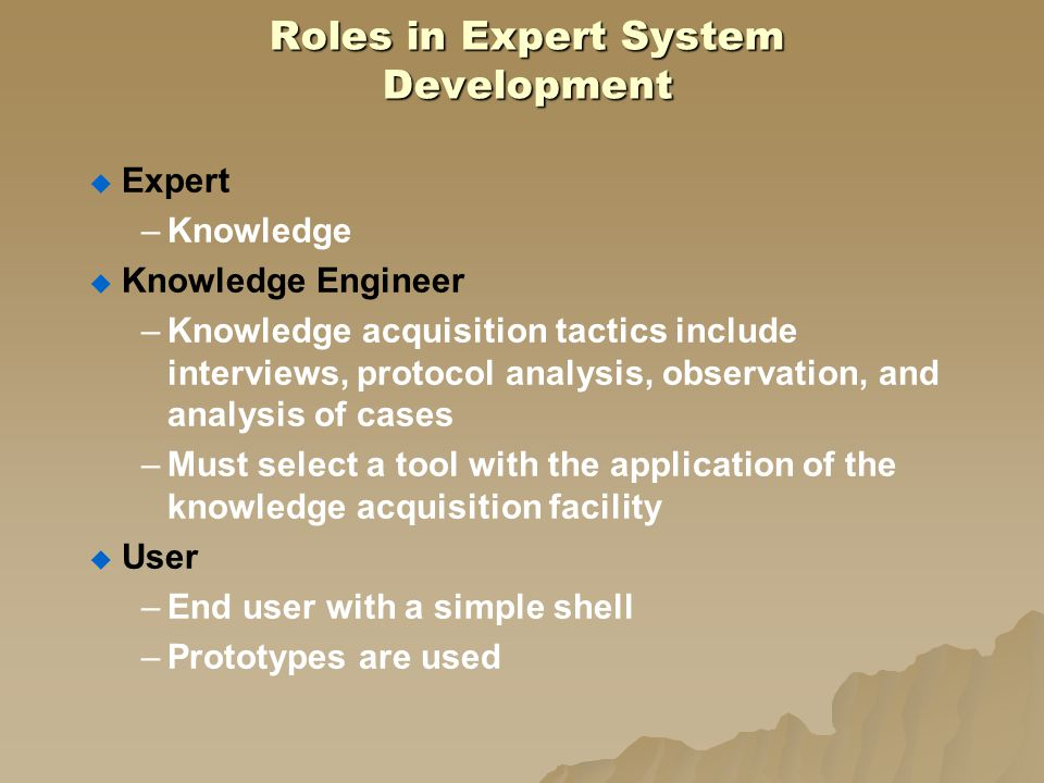 Roles in Expert System Development