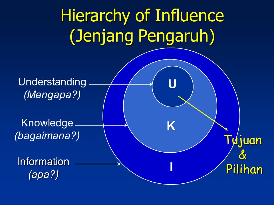 Hierarchy of Influence