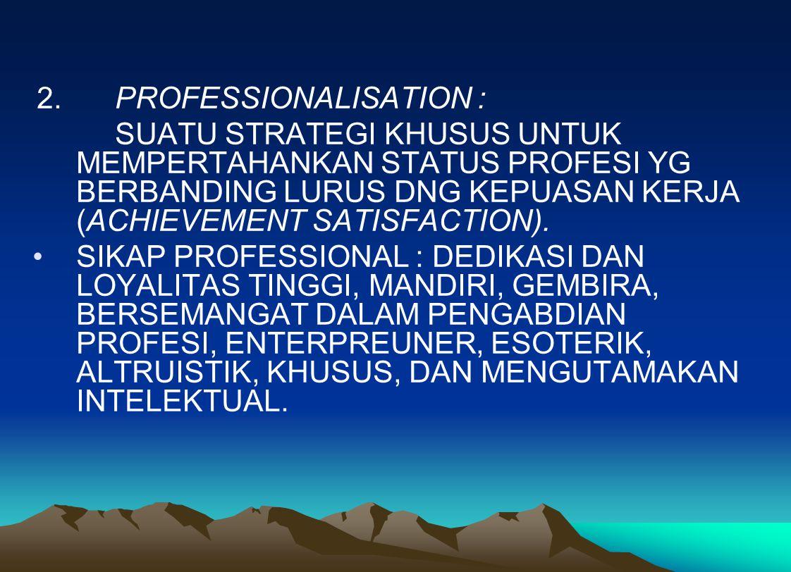 2. PROFESSIONALISATION :