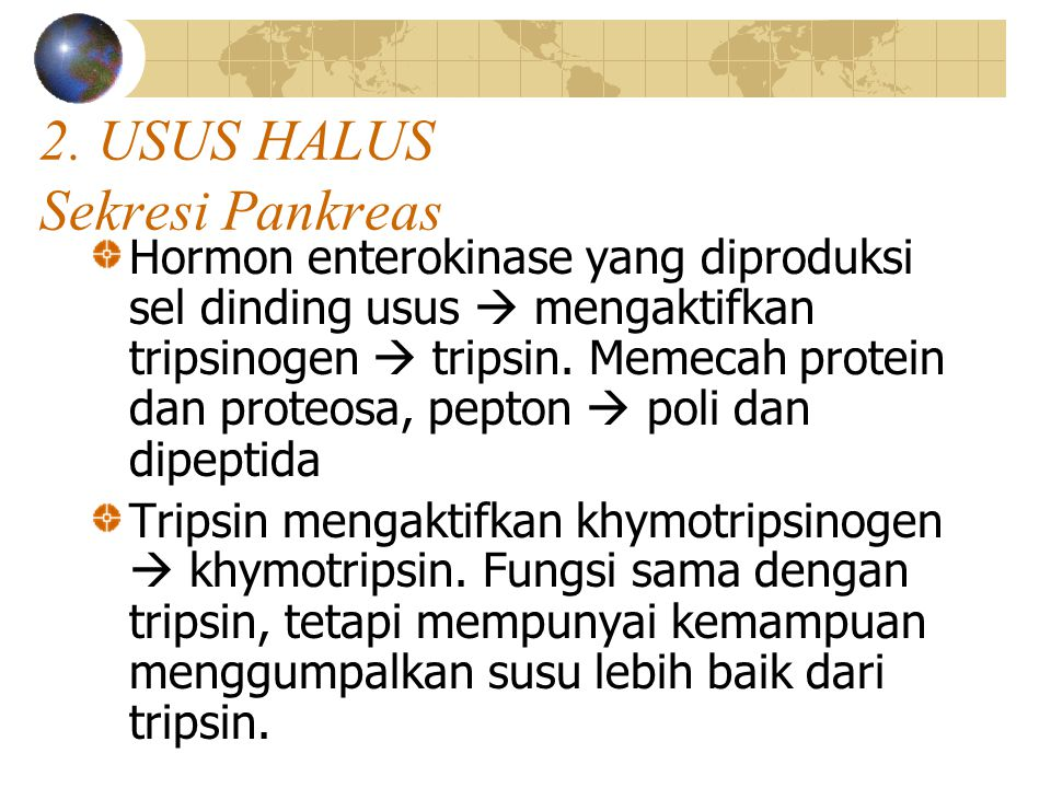 2. USUS HALUS Sekresi Pankreas