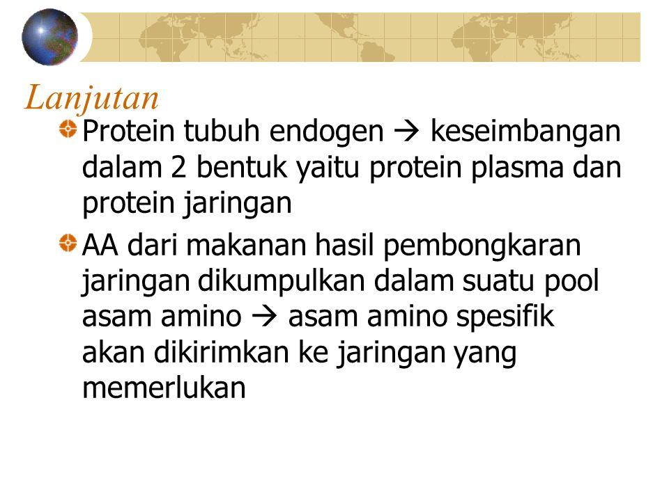 Lanjutan Protein tubuh endogen  keseimbangan dalam 2 bentuk yaitu protein plasma dan protein jaringan.