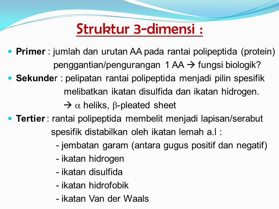 Struktur 3-dimensi : Primer : jumlah dan urutan AA pada rantai polipeptida (protein) penggantian/pengurangan 1 AA  fungsi biologik