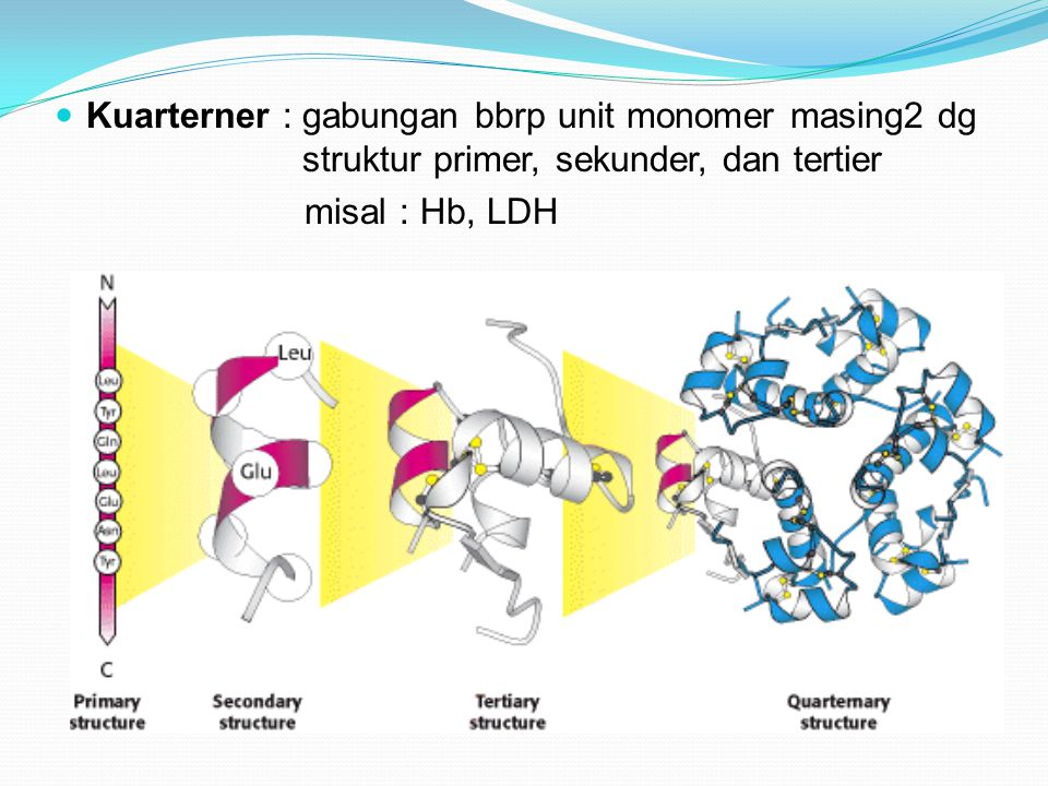 Kuarterner : gabungan bbrp unit monomer masing2 dg