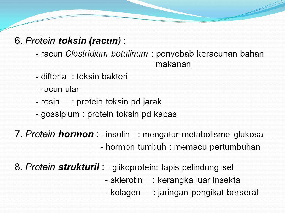 6. Protein toksin (racun) :