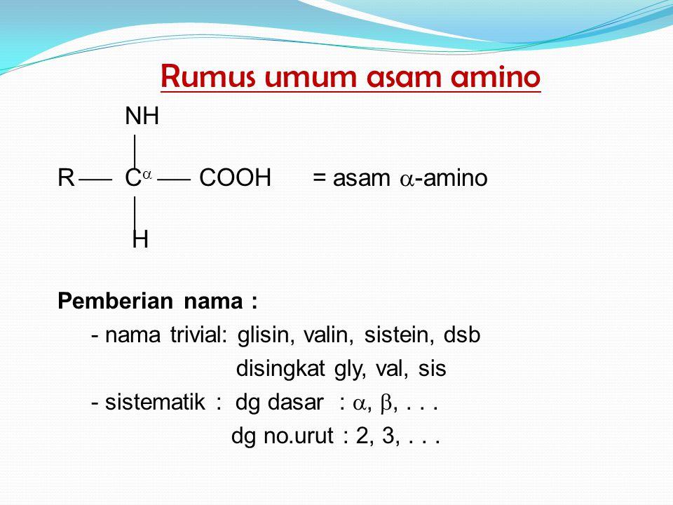 Rumus umum asam amino NH R C COOH = asam -amino H Pemberian nama :