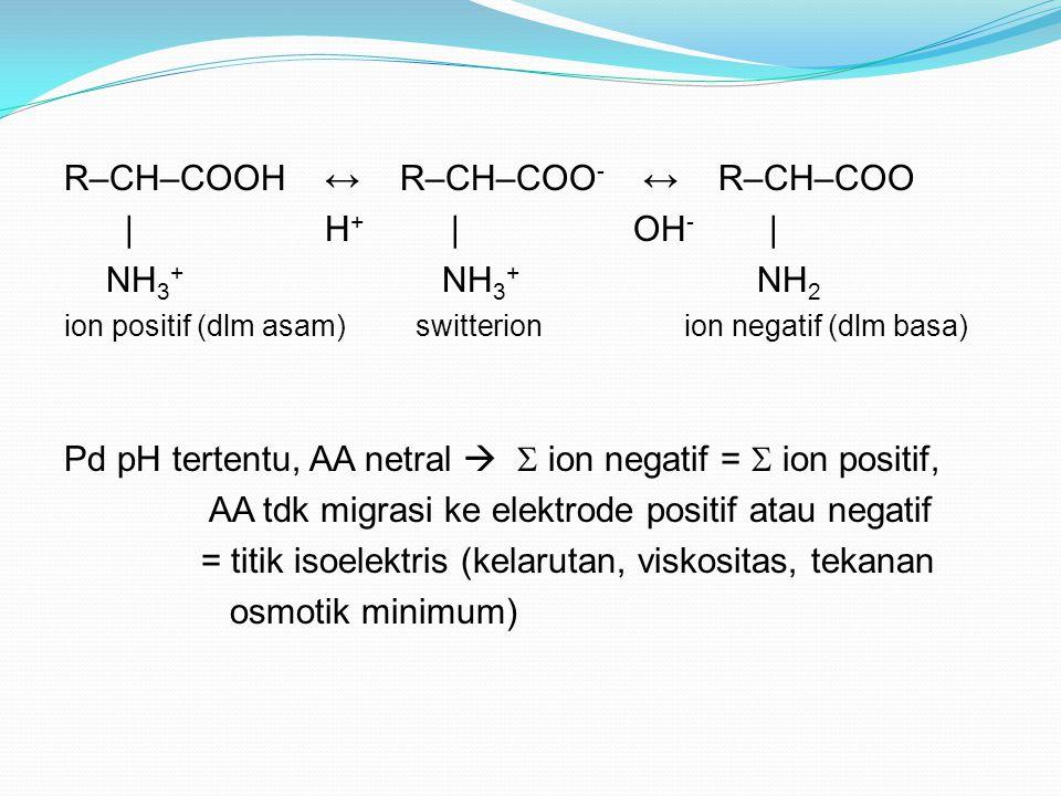 R–CH–COOH ↔ R–CH–COO- ↔ R–CH–COO | H+ | OH- | NH3+ NH3+ NH2