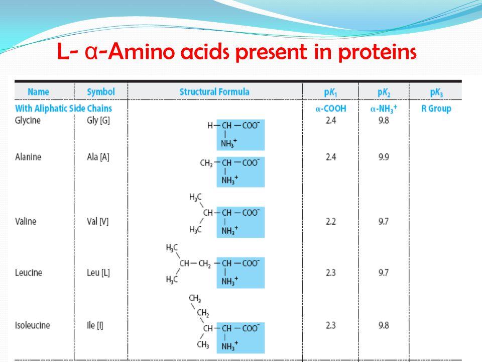 L- α-Amino acids present in proteins