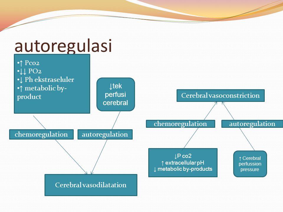 autoregulasi ↑ Pco2 ↓↓ PO2 ↓ Ph ekstraseluler ↑ metabolic by-product