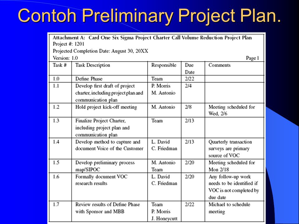 Contoh Preliminary Project Plan.